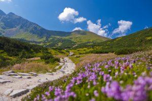 mountains-góry-saletyni-olsztyn