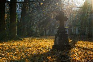 cmentarz-saletyni-olsztyn-autumn