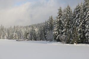 lake-jezioro-zima-saletyni