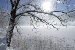 winter-zima-olsztyn